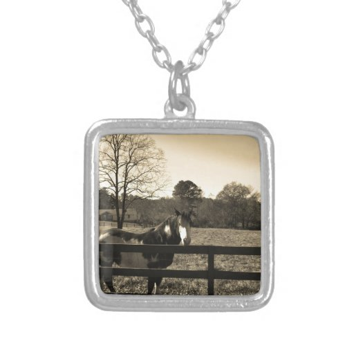 Sepia Tone  Photo of  brown  and white Horse Necklaces