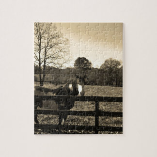 Sepia Tone Photo of brown and white Horse Puzzle