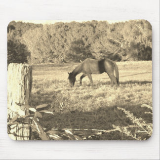 Sepia Tone  Photo of  brown Horse Mouse Pad