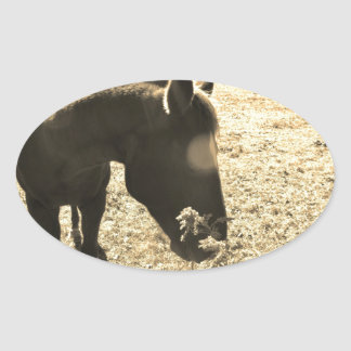 Sepia Tone  Photo of  brown Horse with flowers Oval Sticker