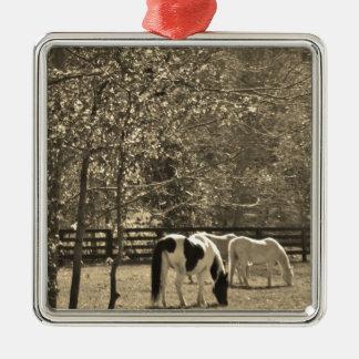 Sepia Tone  Photo of Horse Metal Ornament