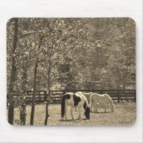Sepia Tone  Photo of Horse Mouse Pad