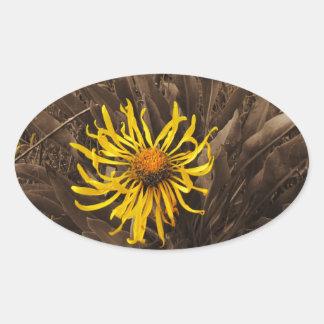 Sepia tone Yellow wildflowers Oval Sticker