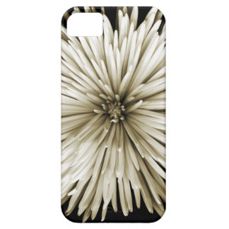 Sepia toned Mums iPhone Case iPhone 5 Covers