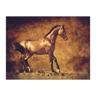 Sepia Toned Rustic Horse Art Canvas Print