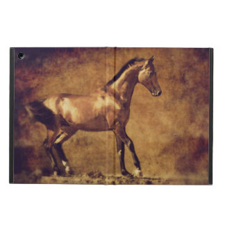 Sepia Toned Rustic Horse Art iPad Air Cover