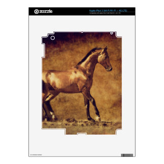 Sepia Toned Rustic Horse Art Skins For iPad 3