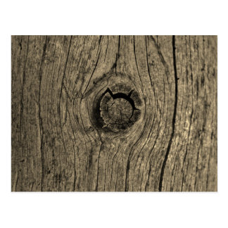 Sepia toned tree wood close up postcard
