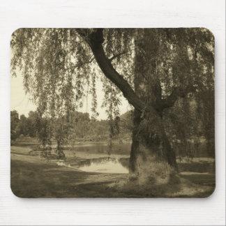 Sepia Tree Mousepad