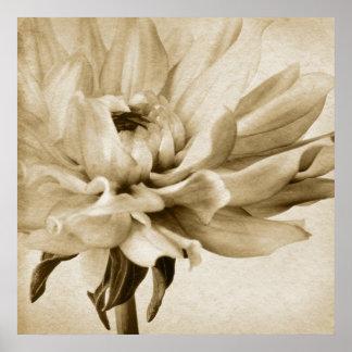 Sepia White & Cream Dahlia Background Customized Poster