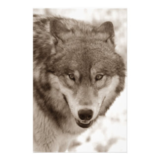 Sepia Wolf Stationery