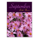 September Birth Flower - Aster Note Card