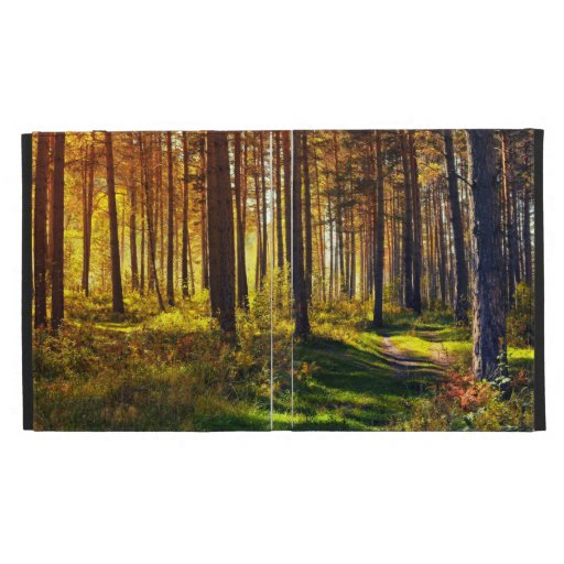 September Forest iPad Case