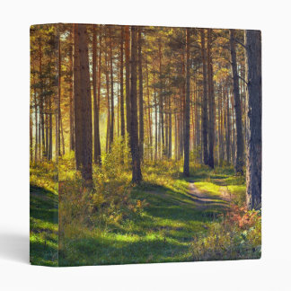 September in the forest.Sunrise in autumn forest 3 Ring Binder