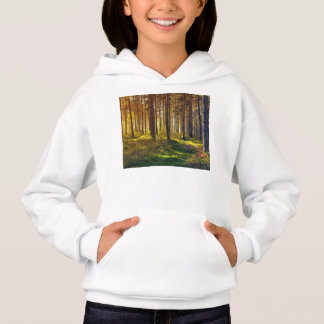 September in the forest.Sunrise in autumn forest Hoodie