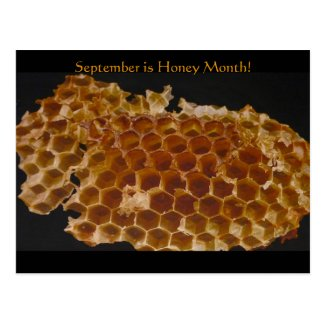 September is Honey Month! Postcard
