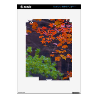 SEPTEMBER PICTURES iPad 3 DECALS