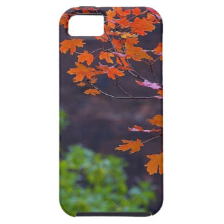 SEPTEMBER PICTURES iPhone SE/5/5s CASE