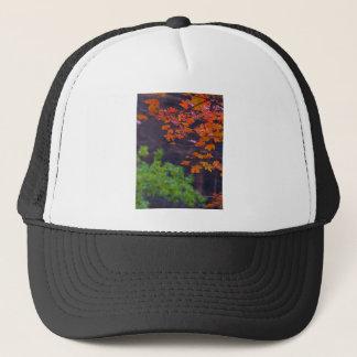 SEPTEMBER PICTURES TRUCKER HAT