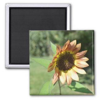 September Sunflower Magnet