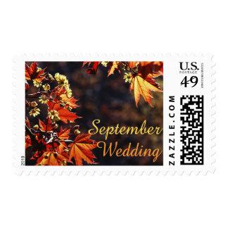 September Wedding stamps