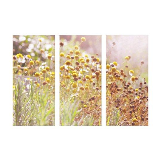 Septembers Magic Canvas Print