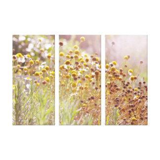 Septembers Magic Gallery Wrapped Canvas