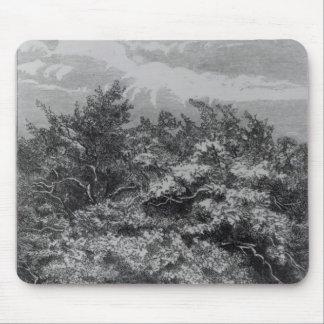 Sepulcro de Charles Waterton Alfombrilla De Raton