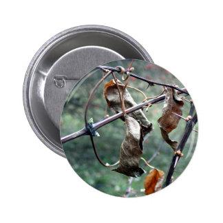 Seque el botón de las hojas pin