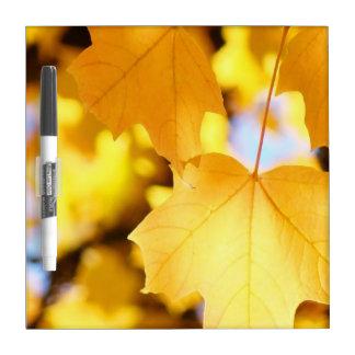 Seque el tema amarillo de oro del otoño de las hoj pizarra blanca