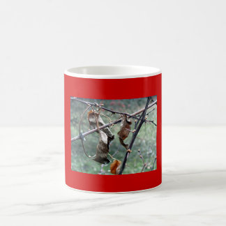 Seque la taza de las hojas
