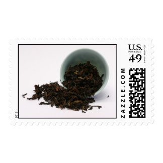 Seque las hojas del té negro