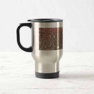 Seque las hojas en campo de hierba seca taza de café