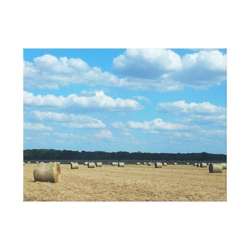 Sequía del granjero 2012 de Cercano oeste Lienzo Envuelto Para Galerias