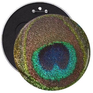 sequin design peacocks feather button