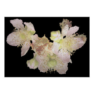 sequin embroidery blackberry blossoms poster
