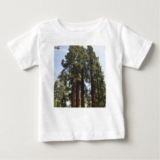 Sequioa National Park Baby T-Shirt