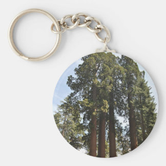 Sequioa National Park Keychain