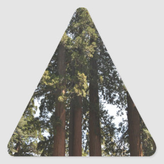 Sequioa National Park Triangle Sticker