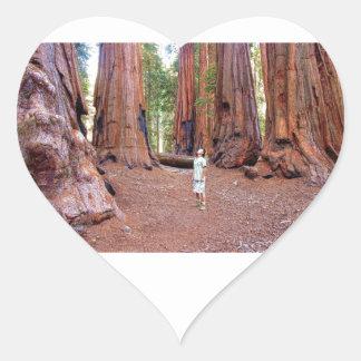 Sequioa Trees Heart Sticker