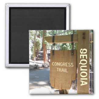 Sequoia/Congress Trail Magnet! Magnet