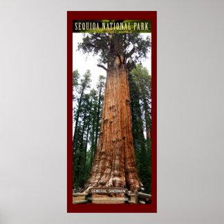 Sequoia General Sherman-Poster Poster