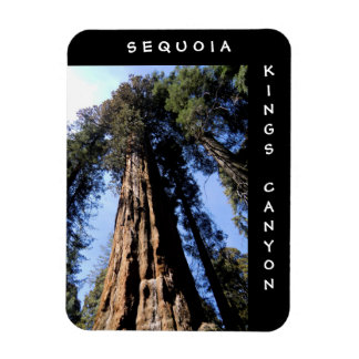 Sequoia Kings Canyon Magnet
