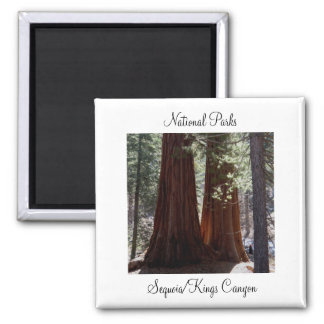 Sequoia/Kings Canyon Magnet