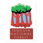 Sequoia National Forest Post Cards