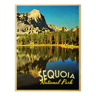 Sequoia National Park California Postcard