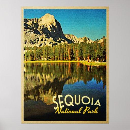 Sequoia National Park California Poster