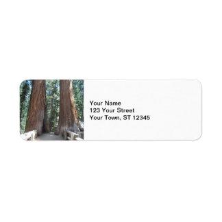 Sequoia National Park Label