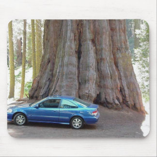 Sequoia National Park Mouse Pad