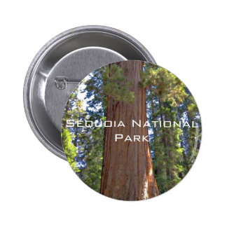 Sequoia National Park Pinback Button